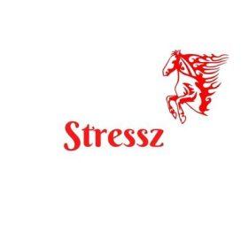 Stressz, idegrendszer